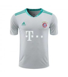 Bayern Munich Gray Goalkeeper Soccer Jersey Mens Football Shirt 2020-2021