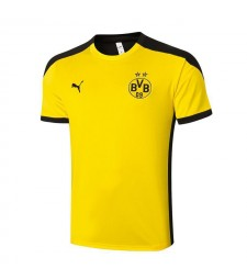 Borussia Dortmund Yellow Short Sleeve Training Soccer Jerseys Mens Football Shirts Uniforms 2020-2021
